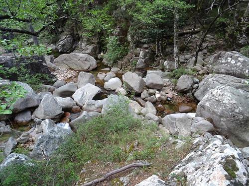 Sur le chemin du Carciara amont (HR22) : la confluence Frassiccia