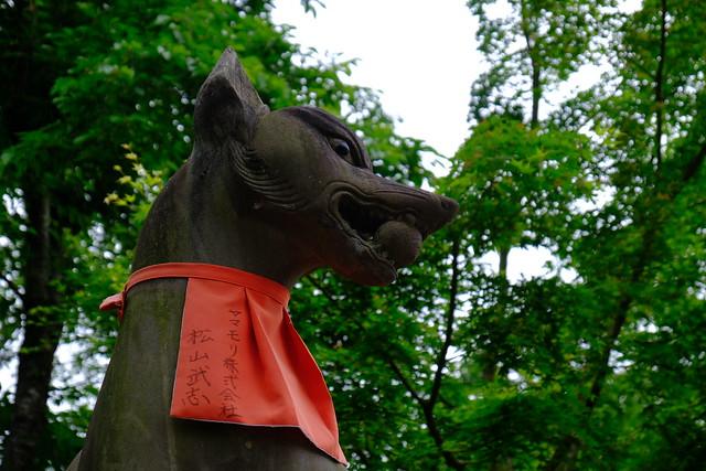 XE3F2838 - Fushimi Inari-taisha - 伏見稲荷大社  (Kioto - Kyoto - 京都)