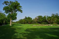 Southern area of the Playacar Golf Course (Hard Rock Campo de Golf, Paseo Xaman - Ha)