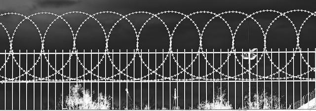 Prisonbreak (BF 20210618)
