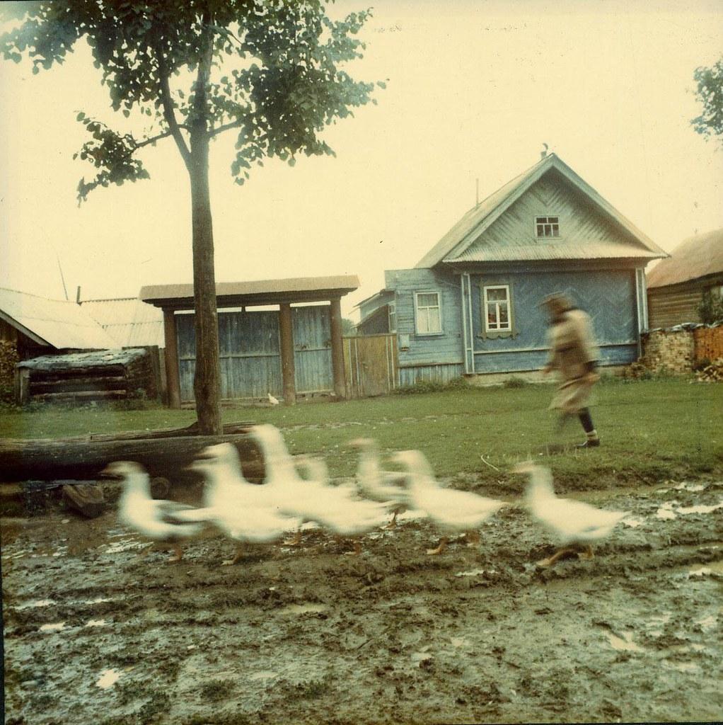 1995.  Республика Марий Эл, Горномарийский район, дер. Мурзанаево
