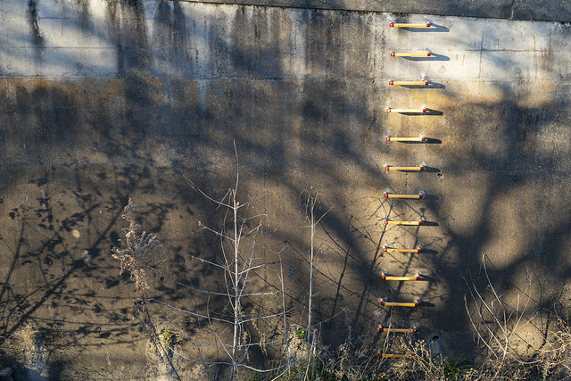 Ladder and Shadows
