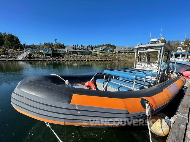 Subtidal Adventures Ucluclet-16
