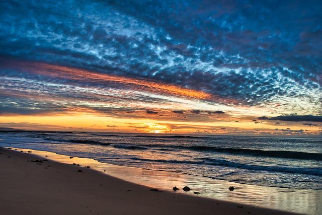 Austinmer sunrise