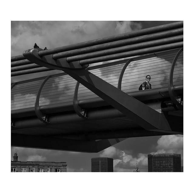 The Pigeons on the Bridge