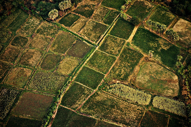 MYANMAR, Burma - Ballonfahrt  früh morgens über das historische Bagan, 78352/13775