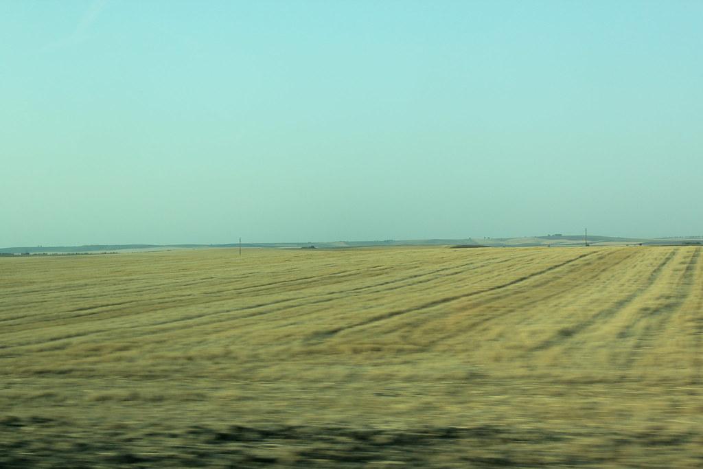 Vistas de algún sitio en Tierra de Campos. El Perdigón (Zamora)