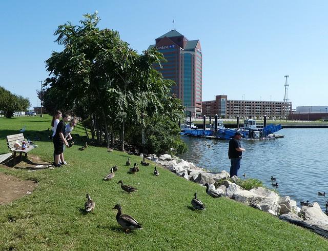 Baltimore - Canton Park Ducks