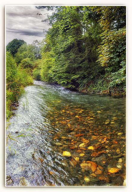 Celui qui a passé le gué, sait combien la rivière est profonde. De Jérôme Touzalin