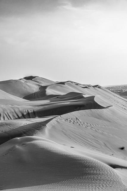 Winding Art - mono - Oman 163