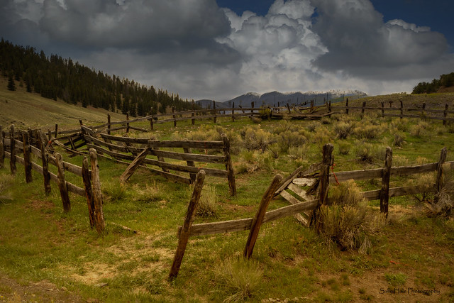 The Corral  HFF