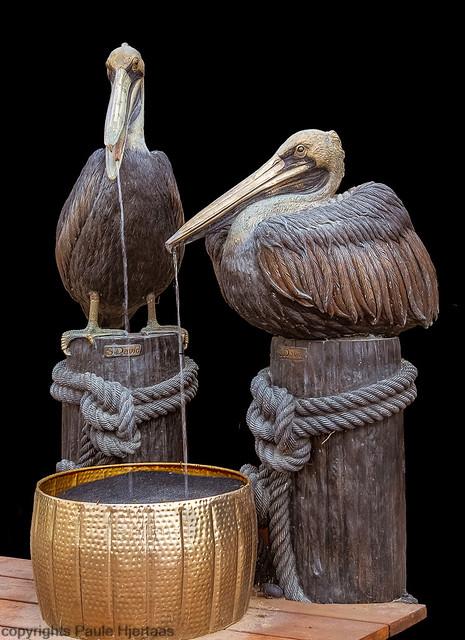 51118 Pelican Fountain