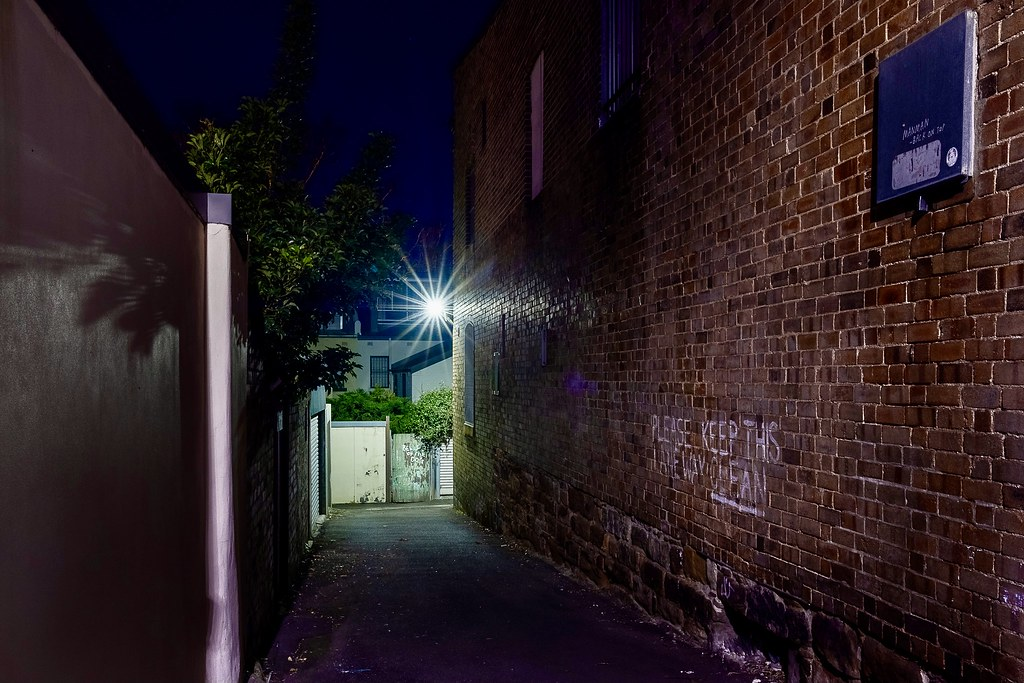 The lessons of Davies Lane in Sydney's Surry Hills can be clear and vague at the same time. For example, 'keep this laneway clean' and something like 'blah blah the dog'.