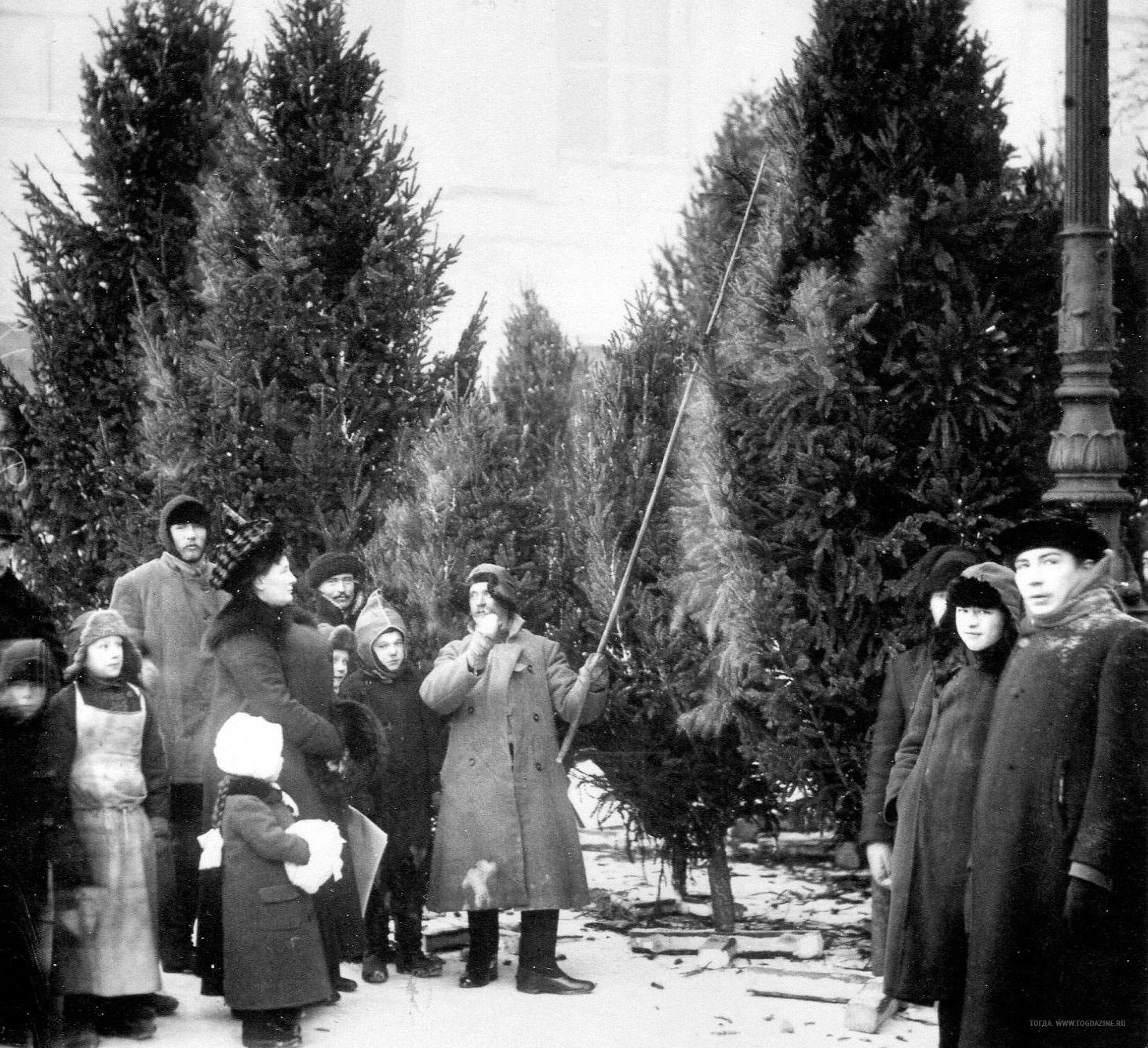 1913.  Ёлочный базар