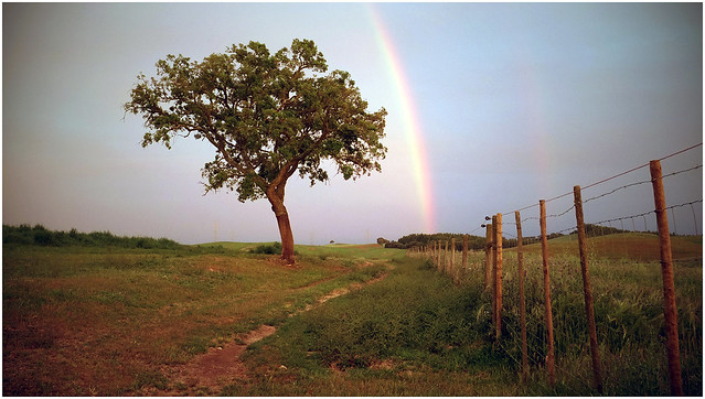 Alentejo Rainbow