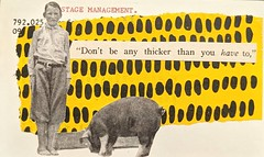 Library catalogue card number 845. Dieting advice??ud83dude1c . Can you tell we've been trying to eat better for a whole week?? The boy and the pig we're already cut out from a 1906 farming magazine when I went looking for words... You