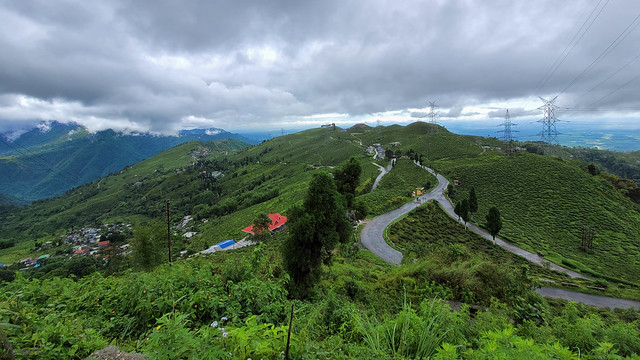 From Tingling Viewpoint