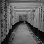 XE3F2651 - Fushimi Inari-taisha - 伏見稲荷大社  (Kioto - Kyoto - 京都)