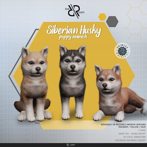 [Rezz Room] Siberian Husky Puppy Animesh (Companion) v2.0.0