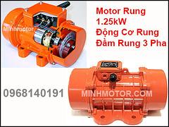 Motor Rung 3 Pha