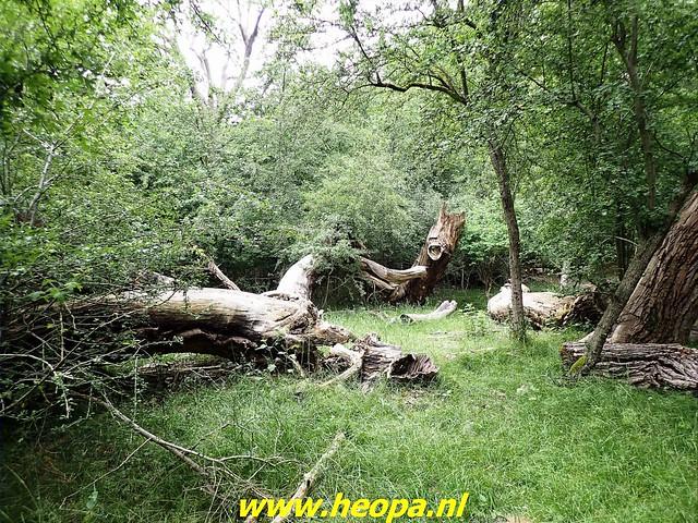 2021-06-19    Strand en  Duin tocht Overveen (109)