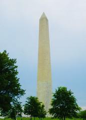 Washington DC 2021