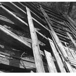Яворницкого Дмитрия проспект, 91 - Фото (принтер) GREY 032 PAPER800 [Вандюк Е.Ф.]