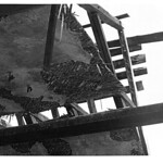 Яворницкого Дмитрия проспект, 91 - Фото (принтер) GREY 016 PAPER800 [Вандюк Е.Ф.]