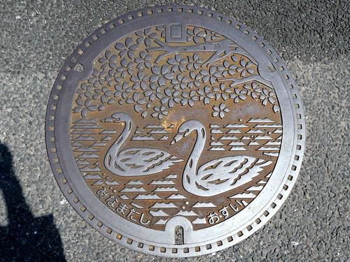Minamata Kumamoto, manhole cover (熊本県水俣市のマンホール)