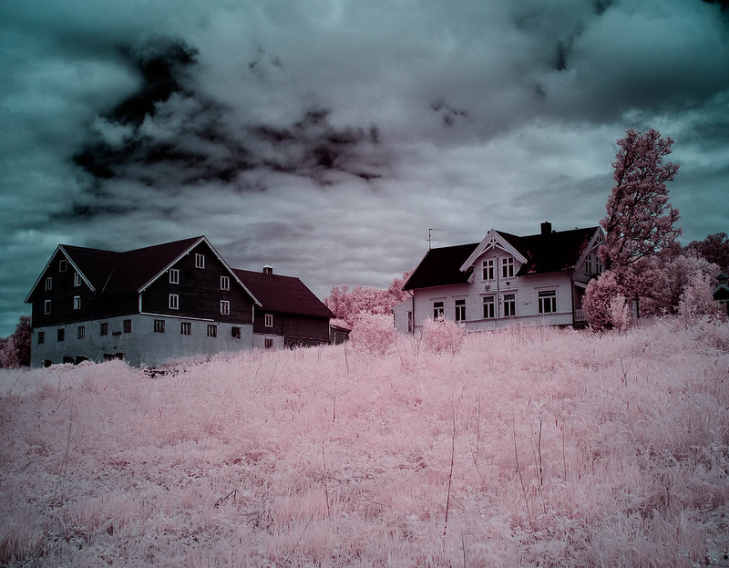 Infrared of the day 20