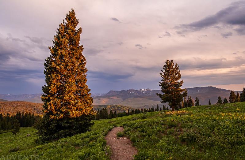 Ripple Creek Overlook Trail