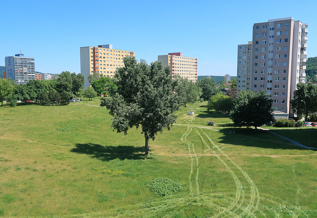 021Jun 16: Park Lawnmowers Action