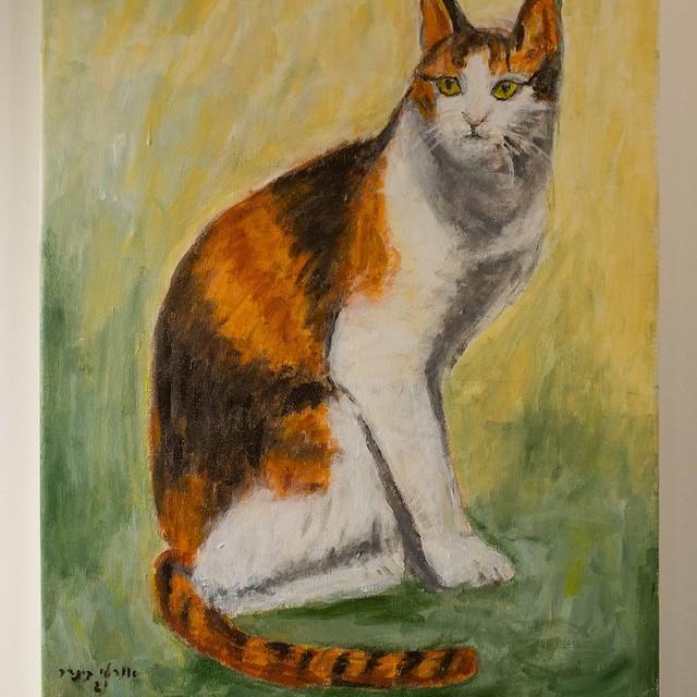 ציור חתול ציורי חתולים יוצרת ישראלית אורלי בינדר  אמנית עכשווית ציירת מודרנית orly binder