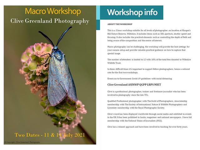 Macro Photography Workshop, Wiltshire, UK