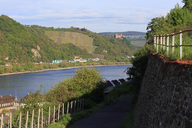 Germany / Rhineland-Palatinate - Rhine Gorge