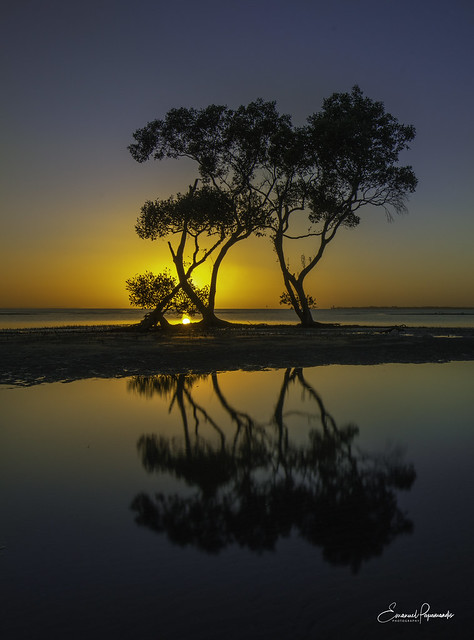 Morning silhouettes (Explore 20/06/2021)