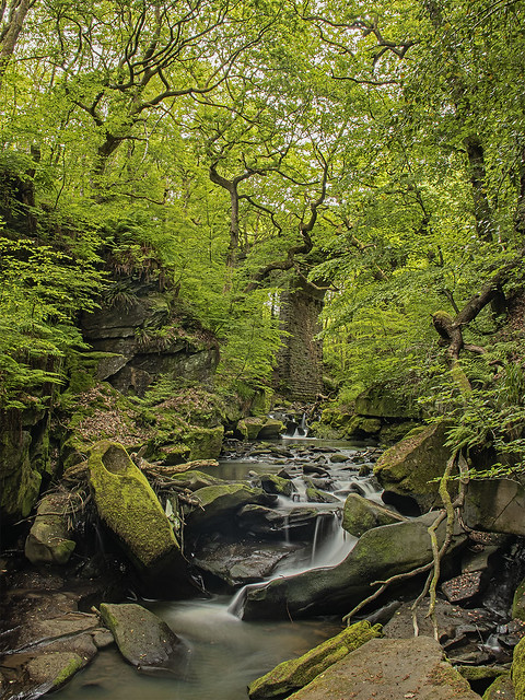 Fairies Table, Healey Dell Nature Reserve, Lancashire