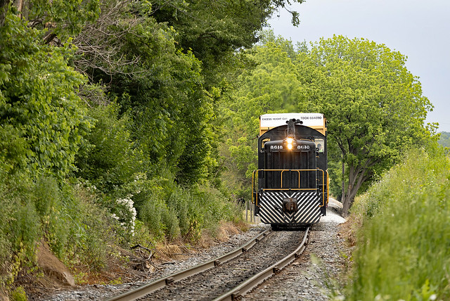 Freight Train from Paradise