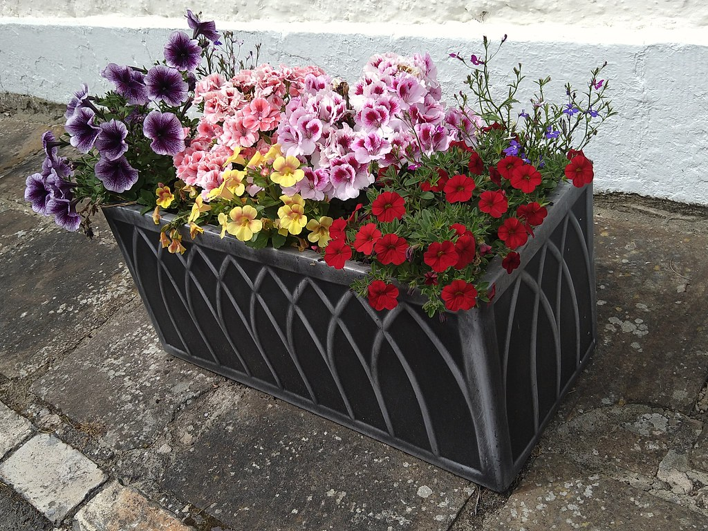 Planter at Gainford