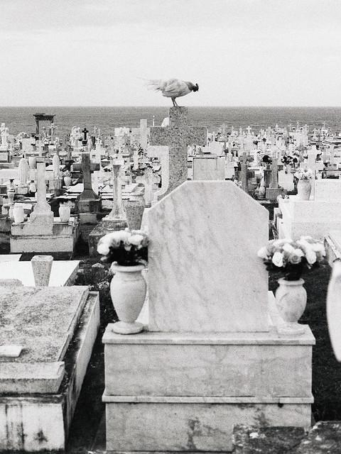 Cementerio María Magdalena de Pazzis