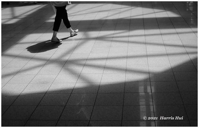 Walking Out Of The Maze - Lansdowne XT9473e