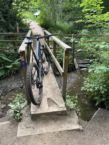 Cheeky Trails