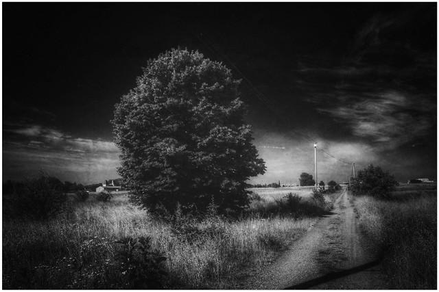 « L'obscur est un chemin, la lumière est un lieu. »