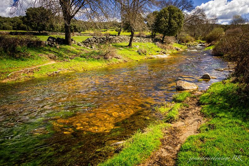 Río Torinas