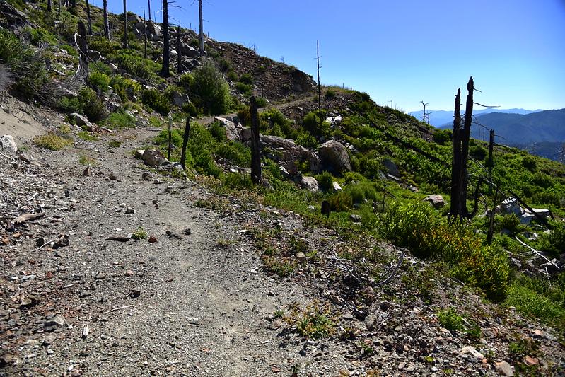Pearsoll Peak hike