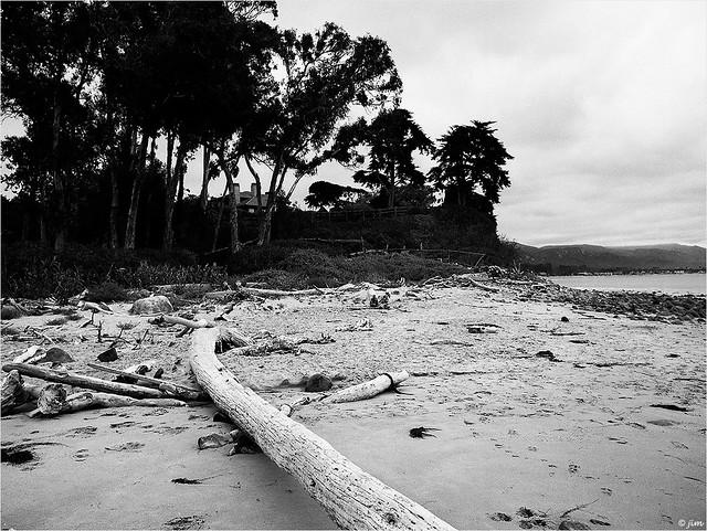 Loon Point Beach
