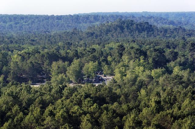 Trois pignons forest