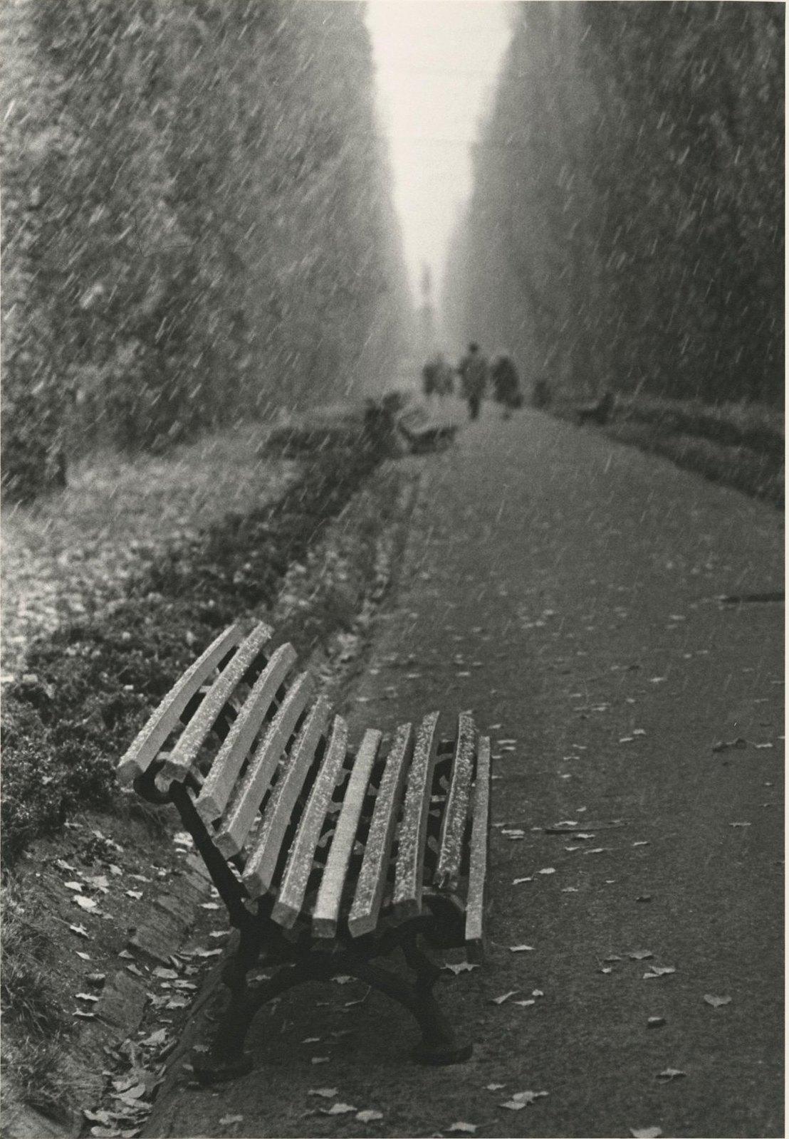 1960. Осень в Сокольниках