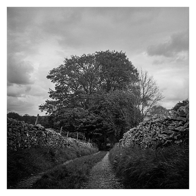 Down the lane to Tideswell