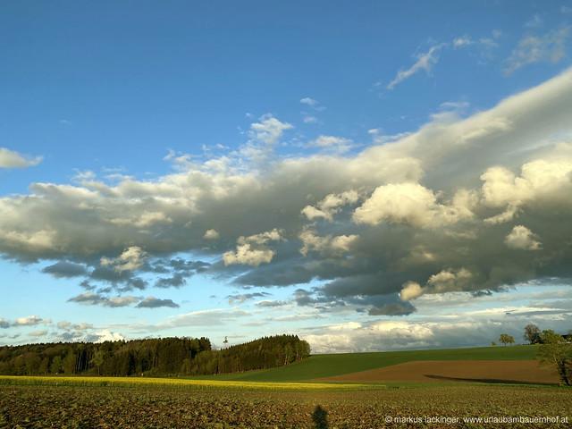 Wolken im Abendlicht in Bad Wimsbach-Neydharting / Oberösterreich